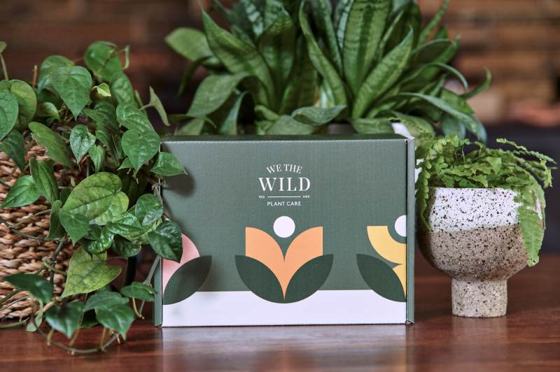 Images of Wild Plant Care Products by Photographer Darren Purbrick at Brickworks Imagery.